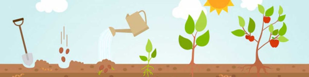 kahalagahan ng sektor ng agrikultura