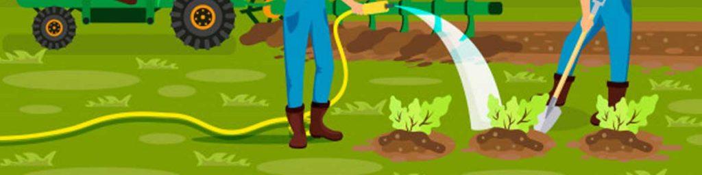 suliranin sa sektor ng agrikultura
