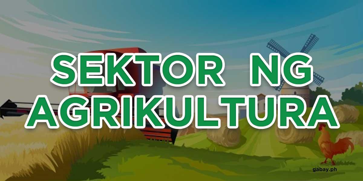 sektor-ng-agrikultura